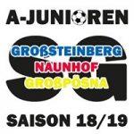 SpG Großsteinberg/Naunhof/Großpösna U19